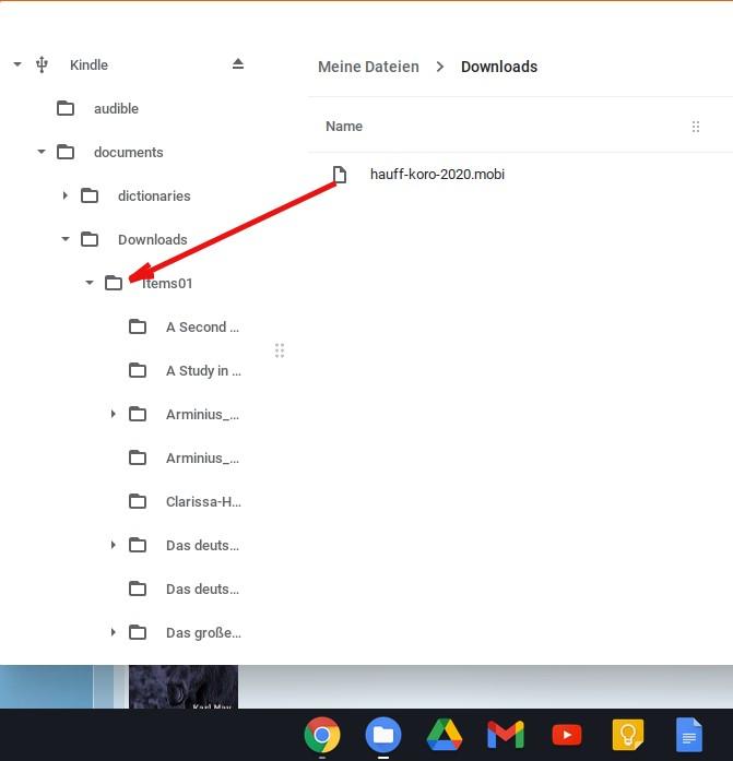 Chromebook – dosiera foliumilo